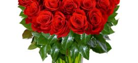 Bleskový rozvoz květin