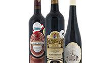 Moravská vína, která si oblíbíte