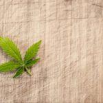 marijuana 3065621 1280