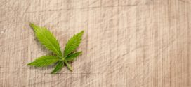 Fáze drogové závislosti a co dělat, když život komplikují drogy