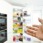 food fridge